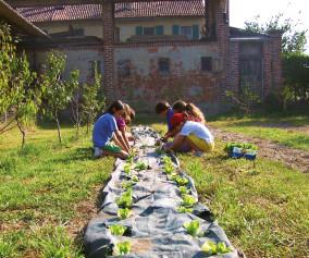 expo2015_bambini_agricoltura