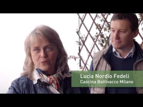 video-cariplo-parco-risaie