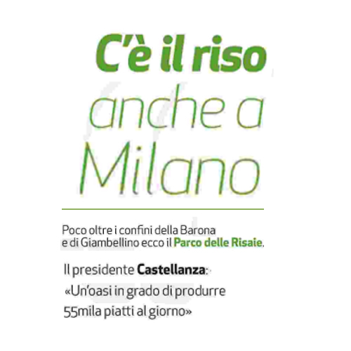 C'è il riseo anche a Milano